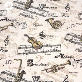 Instrument musique