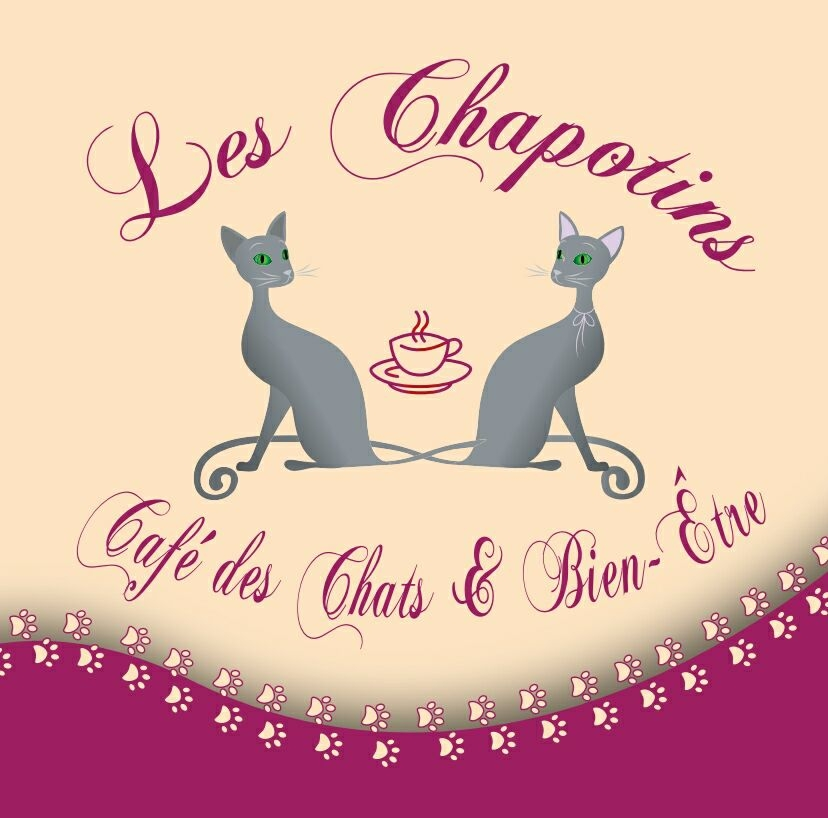 bar a chat les Chapotins
